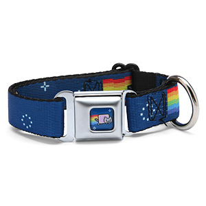 nyancat_seatbelt_buckle_dog_collar