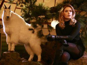 """""""J'aime poser à côté d'animaux empaillés. Ca fait ressortir mon humanité."""""""