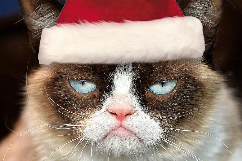 grumpy_cat_christmas_by_michu0022-d6z6lj6