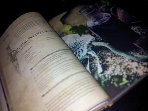 Gastrnogeek - Le Livre des Potions
